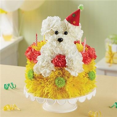 Birthday Wishes Flower CakeTM PupcakeTM 166260 HR Fd 10 04 17